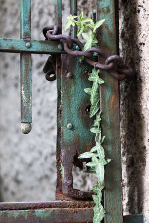 keep gate closed: Old rusty gate locked with a chain and padlock Stock Photo