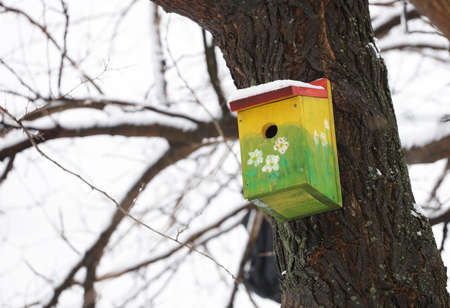Yellow bird house outdoors in winter covered with snow