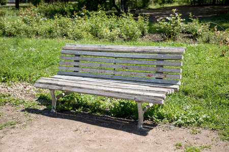Old bench in the park at summer. Vintage retro bench
