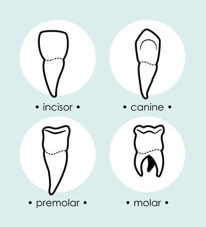 incisor: Dental design over blue background, vector illustration