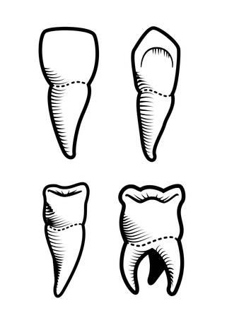 Dental design over beige background, vector illustration Vector