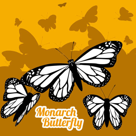 Butterfly design over yellow background, illustration Vector