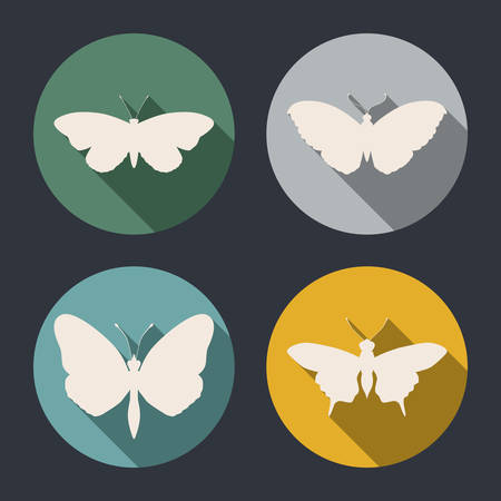 Butterfly design over gray background, vector illustration Vector