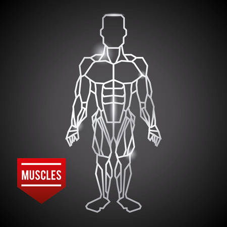 body builder: bodybuilding graphic design , vector illustration Illustration