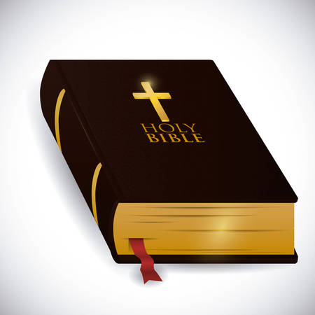 bible and cross: Holy bible design over white background, vector illustration.