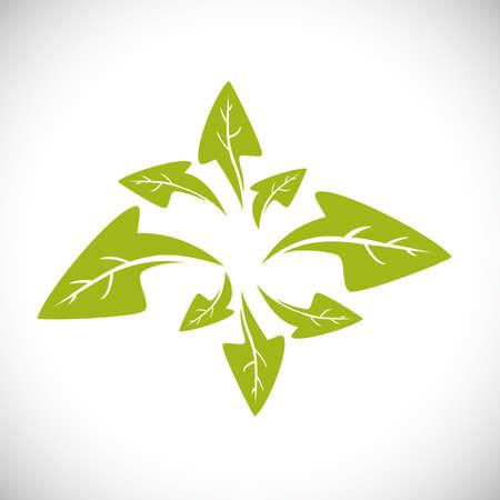flowerbed: Gardening design over white background, vector illustration Illustration