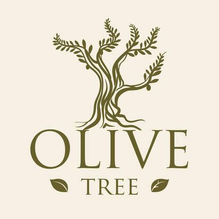 olive green: Olive Oil digital design, vector illustration 10 eps graphic