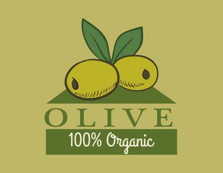 alimentation: Olive Oil digital design, vector illustration 10 eps graphic