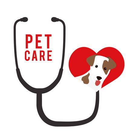 trusting: Pet care digital design, vector illustration 10 eps graphic