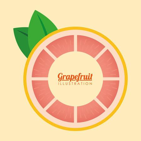 market gardening: Fruits digital design, vector illustration 10 eps graphic