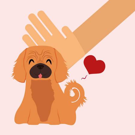 trusting: Pet care digital design, vector illustration 10 eps graphic