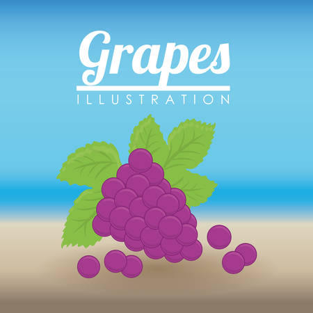 grape crop: Fruits digital design, vector illustration 10 eps graphic