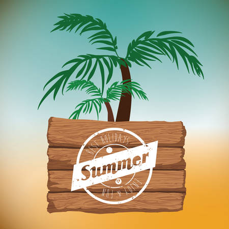 caribbean beach: Summertime digital design, vector illustration  graphic