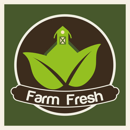 fresh food: Organic food concept  about farm fresh icons design, vector illustration 10 eps graphic.