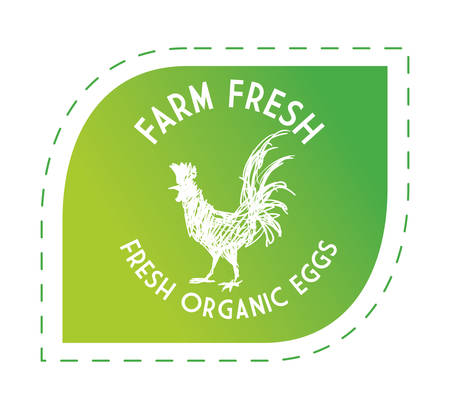 Organic food concept  about farm fresh icons design, vector illustration 10 eps graphic.
