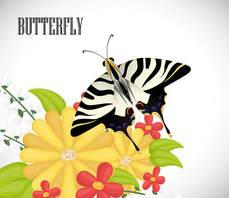 classic style: Butterfly insect and natural icons design, vector illustration  graphic.