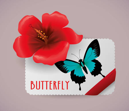 butterfly flower: Butterfly insect and natural icons design, vector illustration