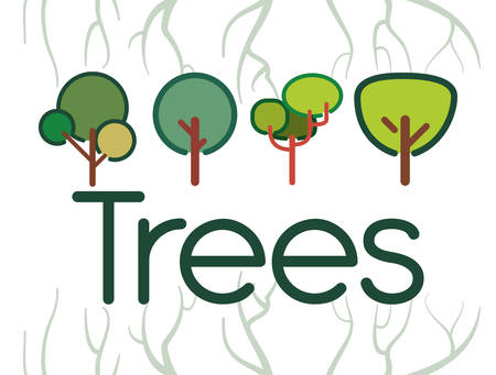 wilderness area: Tree concept with eco icons design, vector illustration 10 eps graphic.