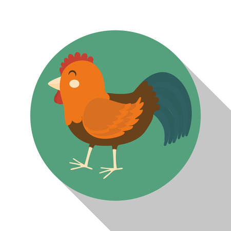 cultivated: Farm concept  with chicken icons design, vector illustration 10 eps graphic.