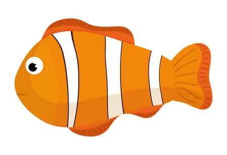 fauna: Sea fauna cartoon, vector illustration graphic design