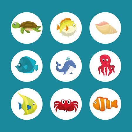 cangrejo caricatura: Sea fauna de dibujos animados, ilustraci�n vectorial dise�o gr�fico Vectores