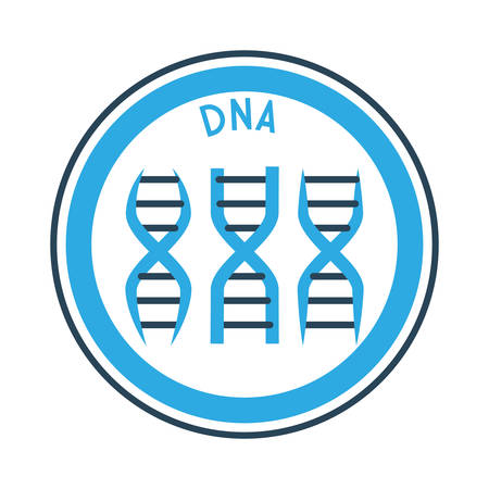 dna graph: Science concept with chemistry icons design, vector illustration 10 eps graphic.