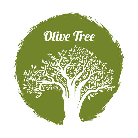 olive tree: Olive Oil concept with organic  icons design, vector illustration 10 eps graphic. Illustration