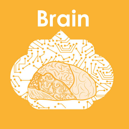 different thinking: Idea concept with brain  icon design, vector Illustration