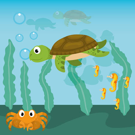 fauna: Sea Fauna concept with icon design, vector illustration 10 eps graphic.