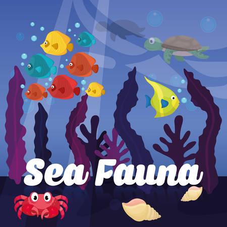 Sea Fauna concept with icon design, vector illustration 10 eps graphic.