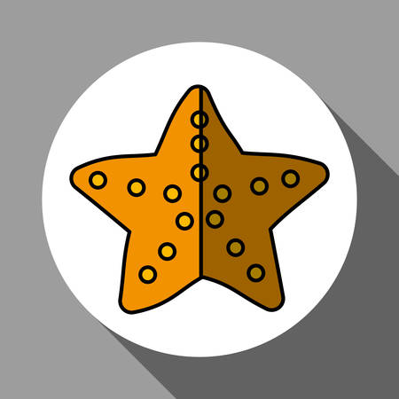 seastar: sea star concept with icon design, vector illustration 10 eps graphic. Illustration