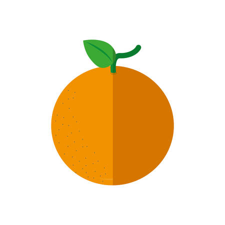 market gardening: Organic and healthy food represented by fresh orange fruit icon over flat and isolated design