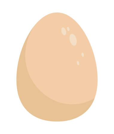 ingredient: Bakery ingredient concept represented by egg icon over flat and isolated background