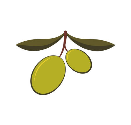 vitamines: Organic and healthy food concept represented by olive fruit icon. isolated and flat illustration