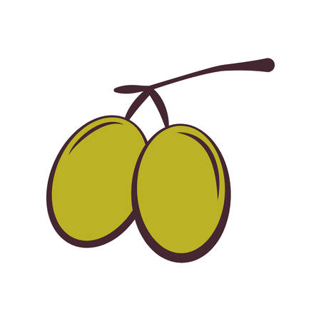 Organic and healthy food concept represented by olive fruit icon. isolated and flat illustration