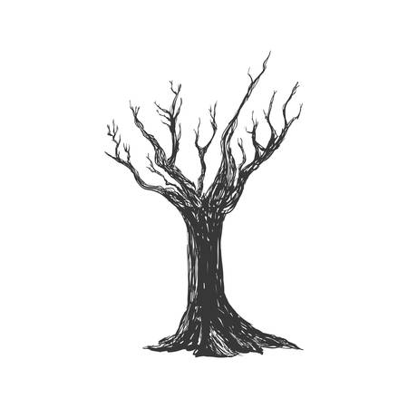 leafless: Nature concept represented by Dry tree icon. Isolated and flat illustration