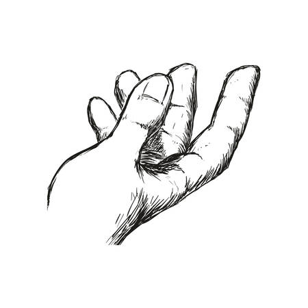 Human hand concept represented by gesture with fingers  icon. Isolated and sketch illustration