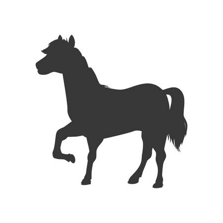 horse care: Horse animal farm pet character icon. Isolated and flat illustration. Vector graphic