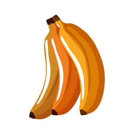 banana healthy food organic food market icon. Isolated and flat illustration. Vector graphic