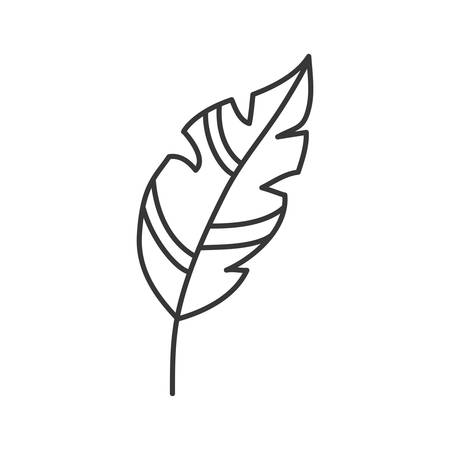 plume: feather plume vintage decoration icon. Isolated and flat illustration. Vector graphic