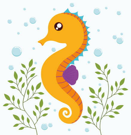 caballo de mar: del diseño del mar de la historieta animal representado por el icono del caballo de mar. Llena de color e ilustración plana. Vectores