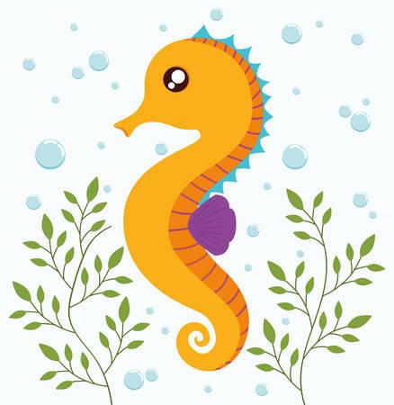 sea horse: Sea animal cartoon design represented by sea horse icon. Colorfull and flat illustration.