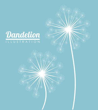 enjoyment: White dandelion icon. Summer seed plant and flower theme. Colorful design. Blue background. Vector illustration
