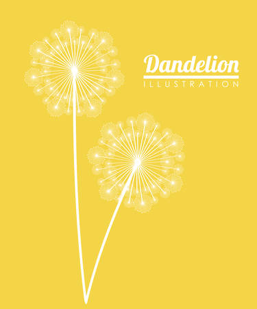 White dandelion icon. Summer seed plant and flower theme. Colorful design. Yellow background. Vector illustration