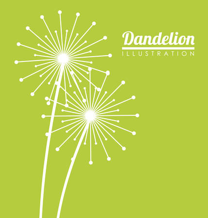 White dandelion icon. Summer seed plant and flower theme. Colorful design. Green background. Vector illustration Illustration