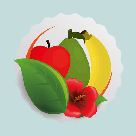 banana leaf food: Apple banana flower and leaf icon. Fruits summer healthy and organic food theme. Colorful design. Vector illustration