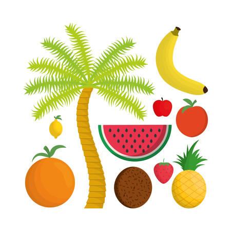palmtree: Coconut strawberry pineapple apple watermelon banana orange lemon and palmtree icon. Fruits summer healthy and organic food theme. Colorful design. Vector illustration Illustration