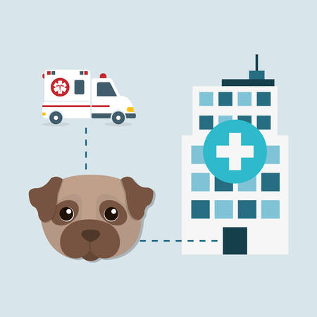 car care center: pet care center service icons vector illustration design