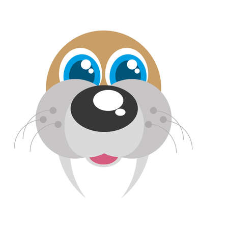 sea lion: sea lion funny face isolated icon vector illustration design Stock Photo