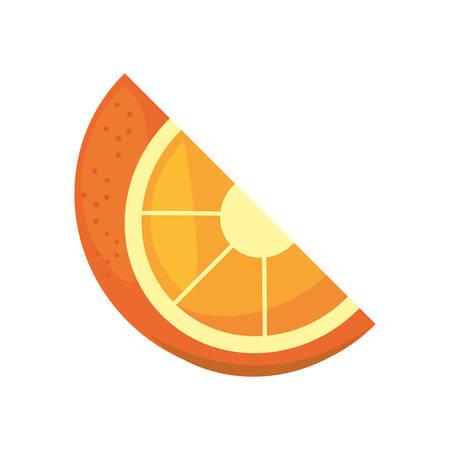citrus fruit: orange citrus fruit isolated icon vector illustration design